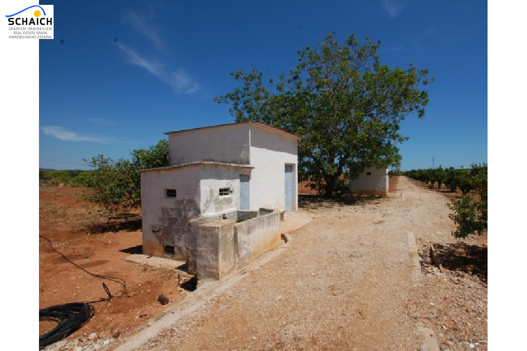 residential ground in Pego for sale, plot area 22224 m², ref.: O-V47014-5
