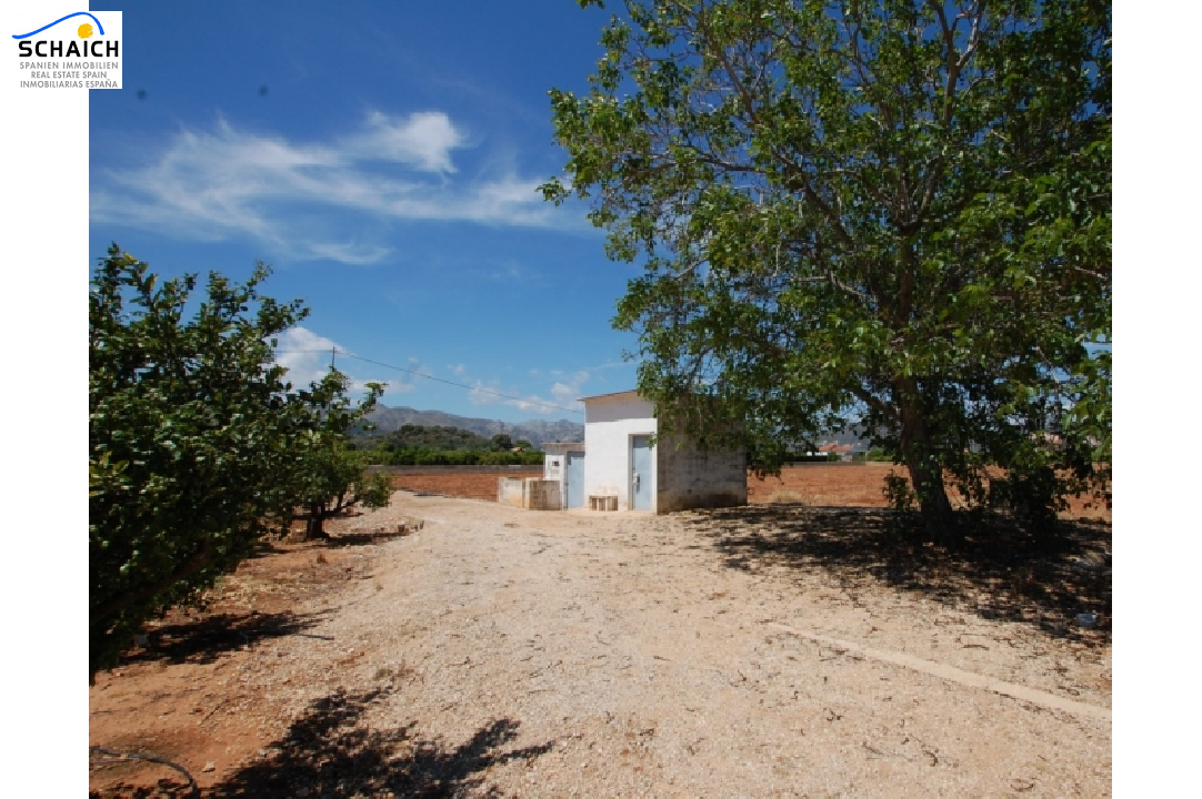 residential ground in Pego for sale, plot area 22224 m², ref.: O-V47014-7