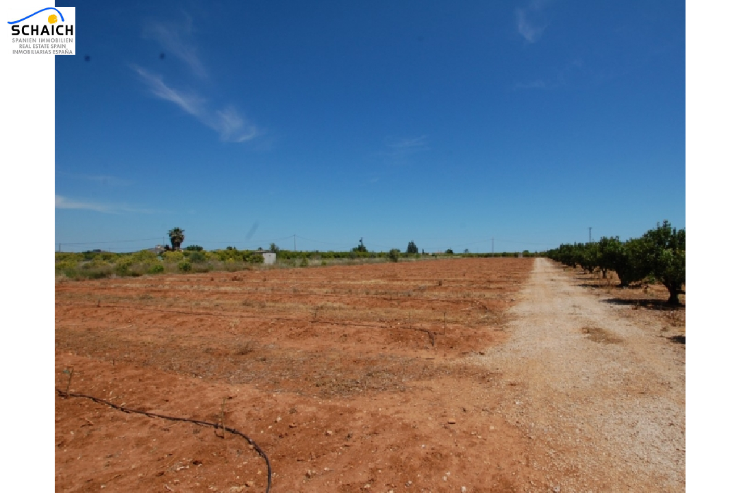 residential ground in Pego for sale, plot area 22224 m², ref.: O-V47014-8